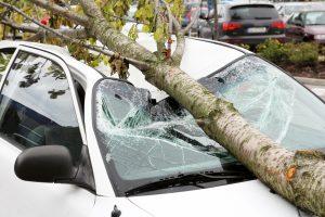 Was tun, wenn die Versicherung bei Schäden bei Sturm und Hochwasser nicht zahlen will